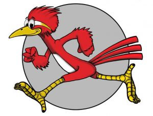 New Roadrunner without logo