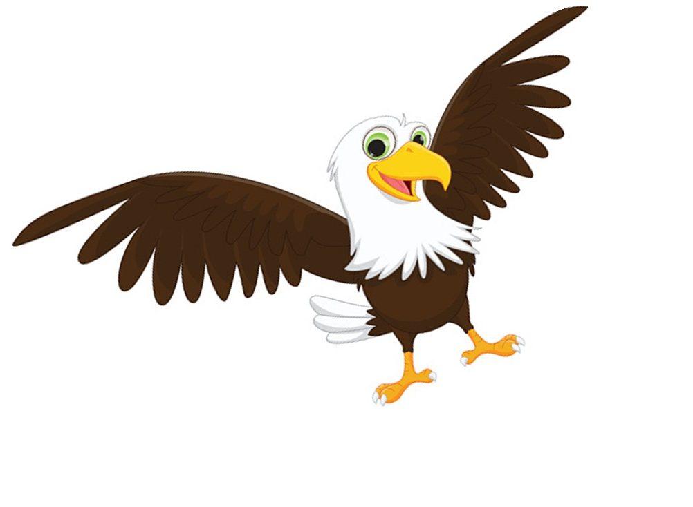 Picture1 eagle